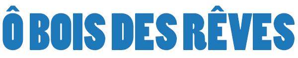 obois-bleu600